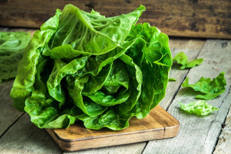 vegetal-del-mes-marzo-lechuga-1119x746